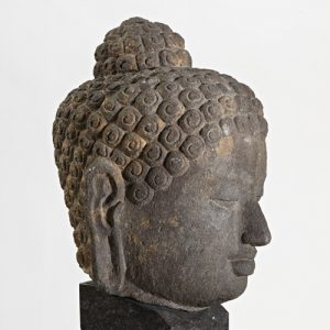 side view of stone buddha head