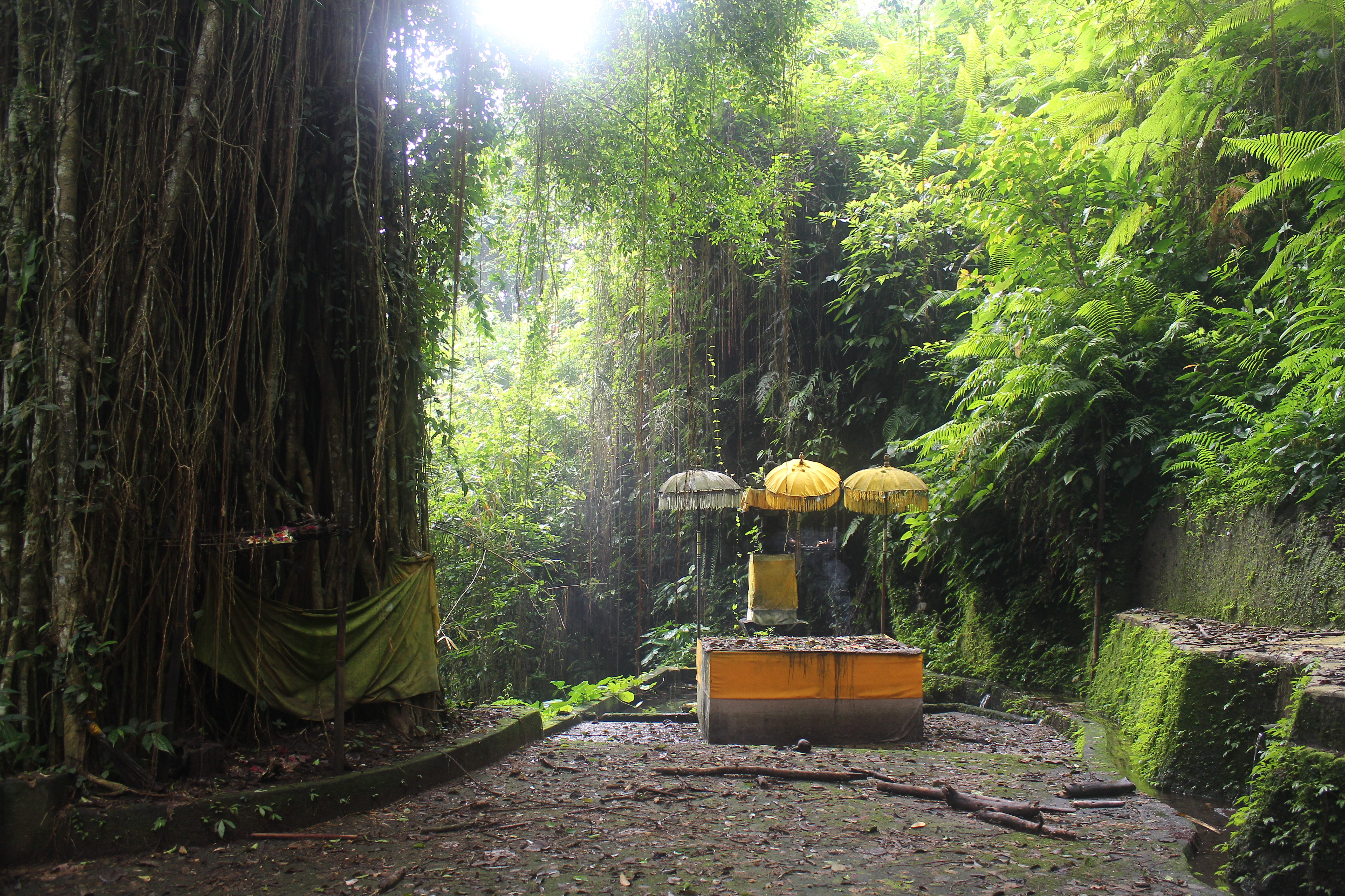 Yellow umbrellas over a platform shrine, set within dense jungle near a river